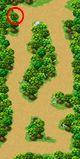 Mini_mapp03b_01.jpg